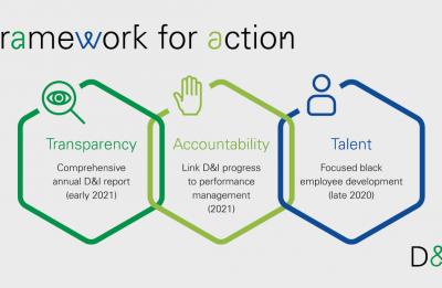 BP Diversity Framework