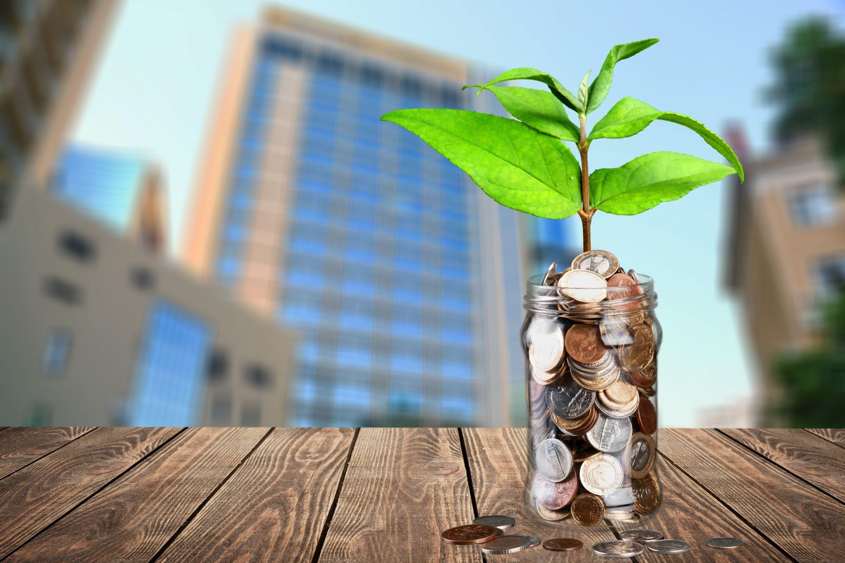 ESG and sustainability