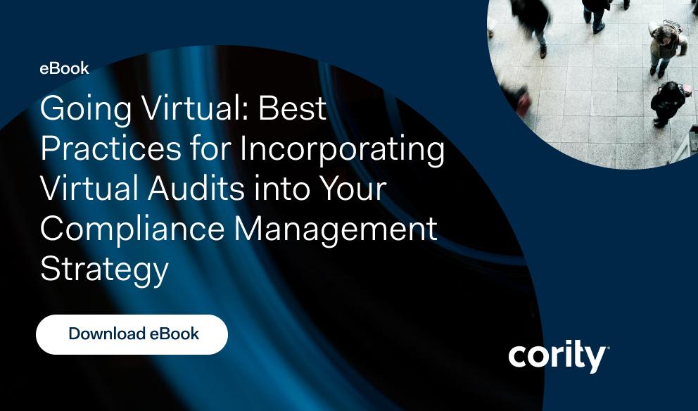 Virtual Audits